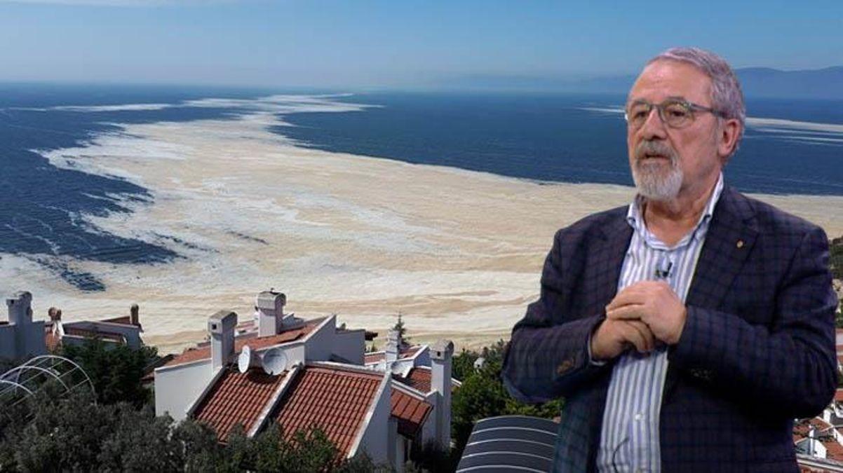 Prof. Dr. Görür'den Ulaştırma Bakanı'nın deniz salyası çıkışına itiraz: Umarım şaka yapmıştır thumbnail
