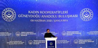 Mehmet Sadık: Kadın Kooperatifleri Güneydoğu Anadolu Bölge Buluşması Gerçekleştirildi