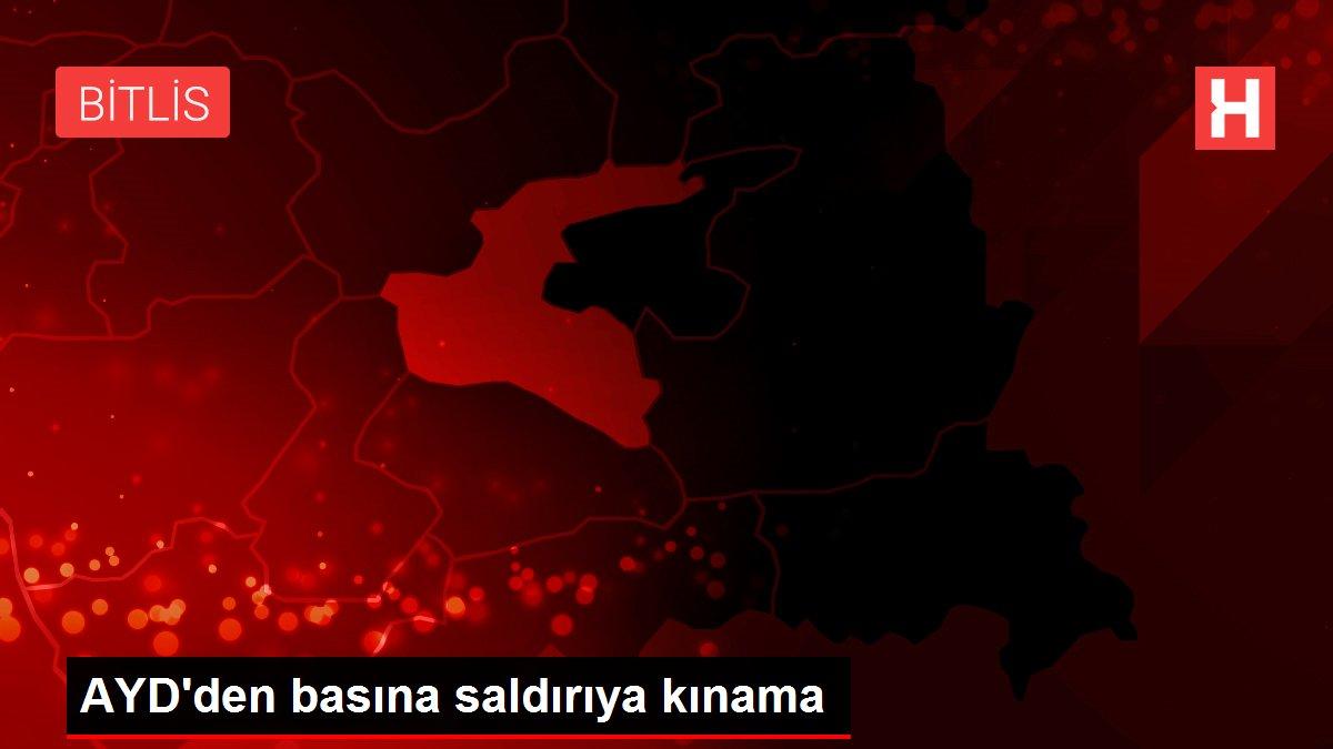 AYD'den basına saldırıya kınama