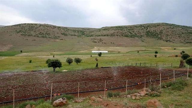 Bingöl'de kabul edilen 18 projeyle 530 dekar alan sulanacak