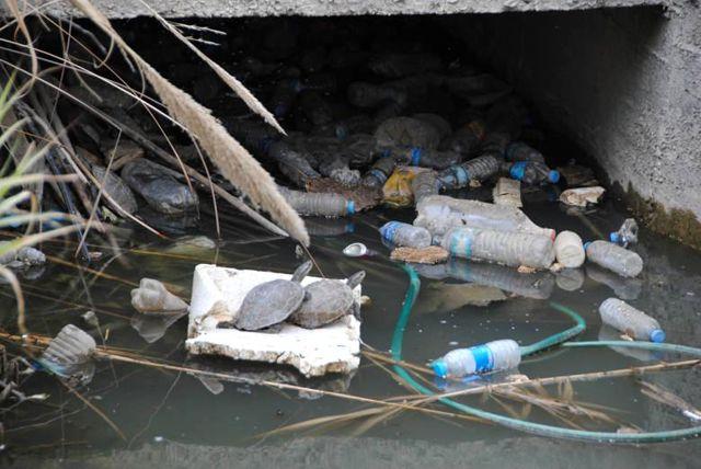 'Sağlıklı Çevre Temiz Antalya' Büyükşehir'in Fotoğraf Yarışması Sonuçlandı