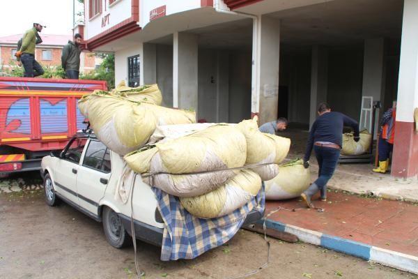 Çay hasadında otomobiller, kamyona dönüşüyor