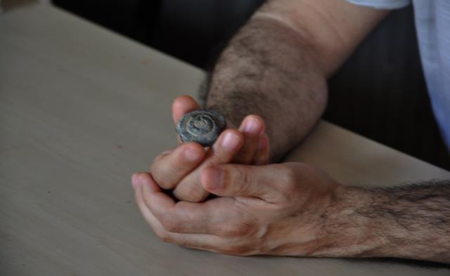 Türk arkeolog görür görmez değerini anladı! Yol kazısında 57 milyon yıllık fosil bulundu