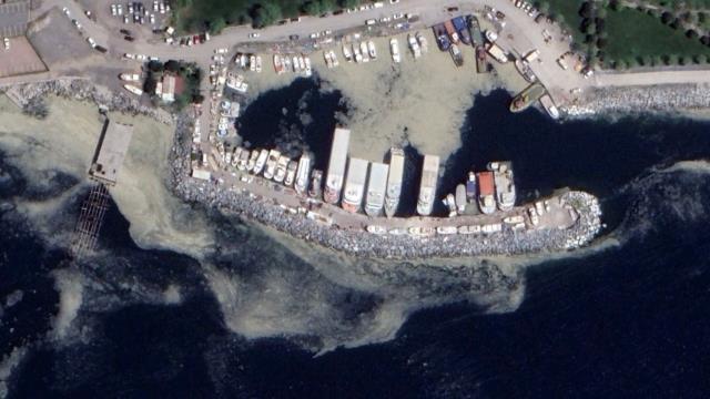 Marmara'yı katleden deniz salyası, Akdeniz'de de görülüyor