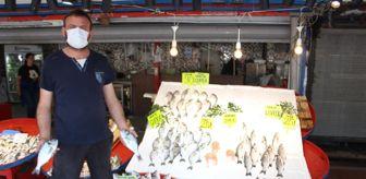 Darbe: Müsilaj Balıkçı esnafını etkiledi