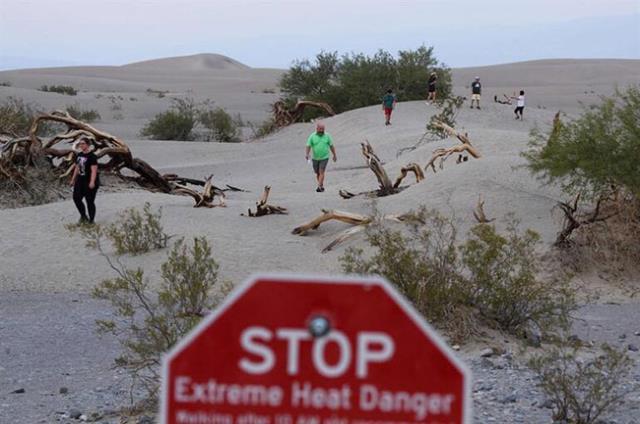 108 yılın en sıcak yazını yaşıyorlar! Tarım alanları nadasa bırakıldı, ormanlar cayır cayır yanıyor