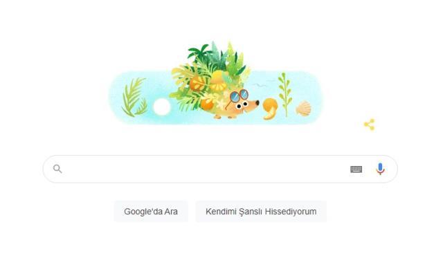 Google 'Yaz 2021' Doodle oldu! Yaz 2021 doodle nedir, ne demek? 21 Haziran Doodle nedir? 21 Haziran günü ne oldu?