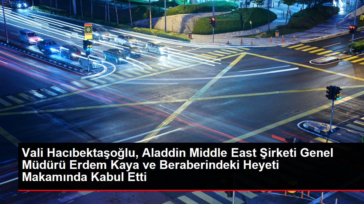 Vali Hacıbektaşoğlu, Aladdin Middle East Şirketi Genel Müdürü Erdem Kaya ve Beraberindeki Heyeti Makamında Kabul Etti