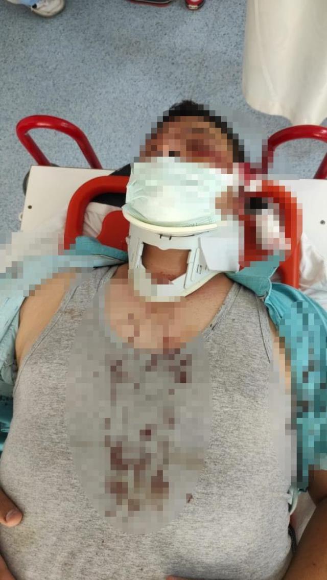 Lütfü Türkkan'ın kaçak villasının yıkımını görüntüleyen muhabir darbedildi