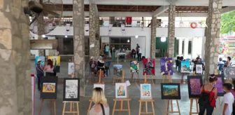 Murat Uysal: Karacasu'da çalıştay ve festival sona erdi