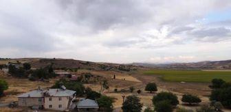 Mazgirt: 'Kuşçu' köyünün leylek sakinlerinin sayısı artıyor