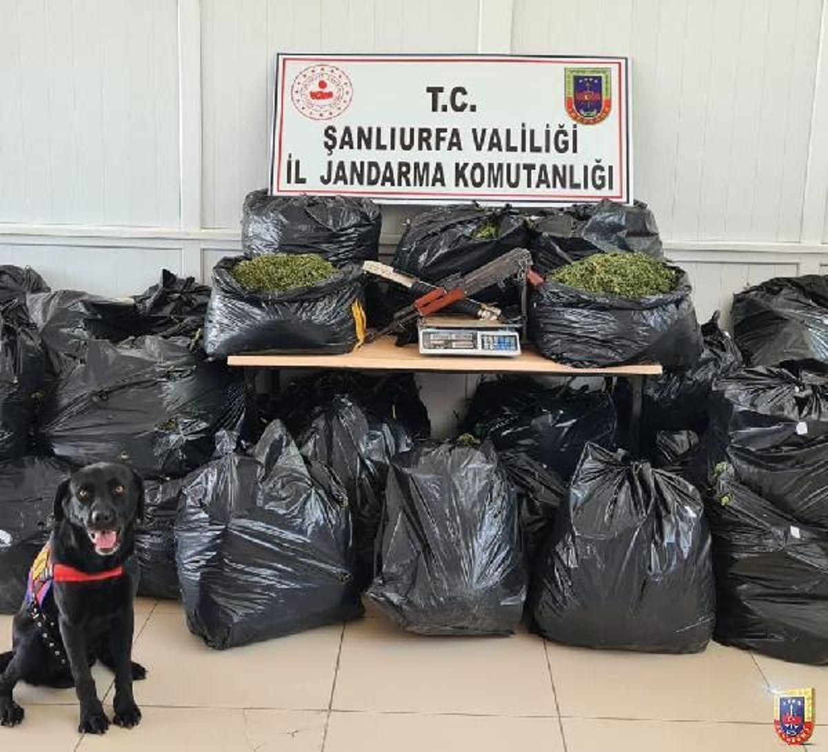Şanlıurfa'da uyuşturucu operasyonu: 10 gözaltı