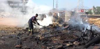 Çakıllı: Alevler kümeslerdeki hayvanları vurdu, yürek sızlatan görüntüler ortaya çıktı