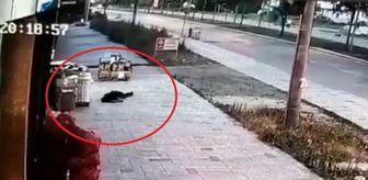 Ali Ekinci: Son dakika haberleri: Eşinin öldürdüğü polisin balkondan düşme anının görüntüsü ortaya çıktı