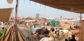 Arife: İSLAMABAD - Pakistan'ın renkli kurban pazarlarında bayram yoğunluğu yaşanıyor