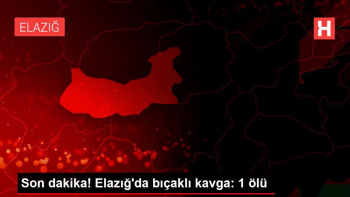 Son dakika! Elazığ'da bıçaklı kavga: 1 ölü