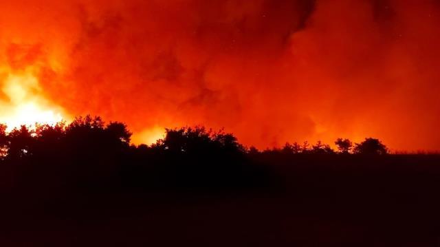 Osmaniye'de çıkan orman yangını sürüyor! Tedbir amacıyla evler boşaltıldı