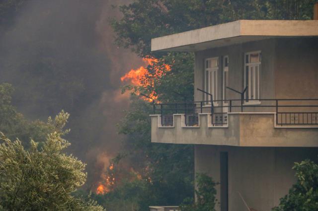 Felaketin boyutu gün ağarınca ortaya çıktı! Manavgat'taki yangından yürek burkan kareler