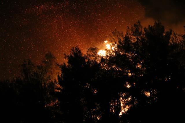 Manavgat'taki orman yangını tekrar yerleşim yerlerine sıçradı! Bölge halkı nöbet tutuyor