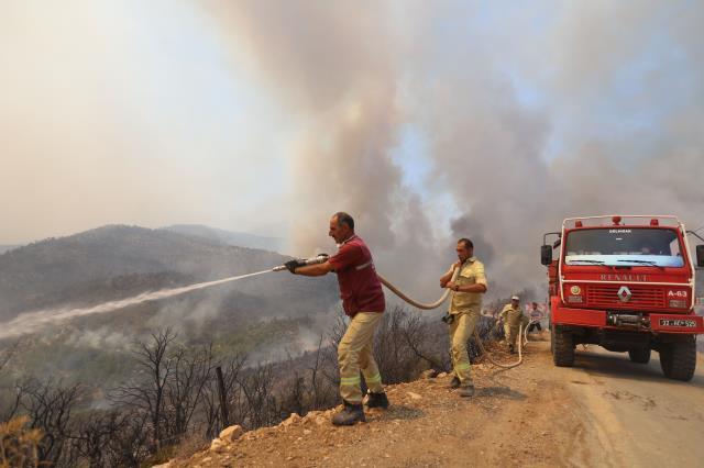 Son Dakika: Bakan Pakdemirli: 8 ilimizde orman yangını var, kontrol altına almamız zaman alabilir