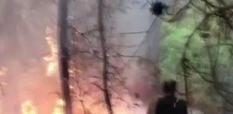 Olimpos: Son dakika haberi   Tatile giden Adanalı gençler, yangına müdahale etti