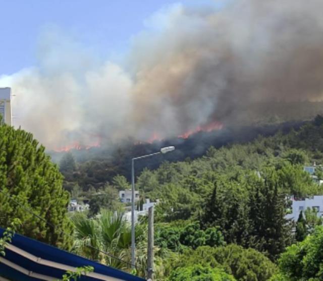 Bodrum'da yerleşim alanına 150 metre uzaklıkta yangın çıktı! Ekipler seferber oldu
