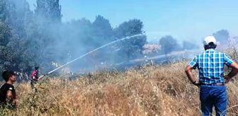 Ali Balcı: Hisarcık'ta 5 dekar hububat ekili alan yandı