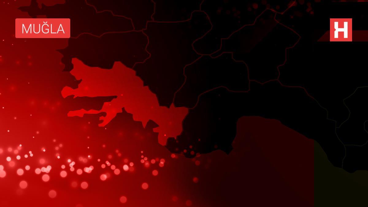 Bodrum'da makilik yangını (6)