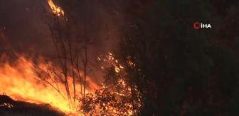 Denizli: Denizli'de yerleşim yerine yaklaşan yangın devam ediyor