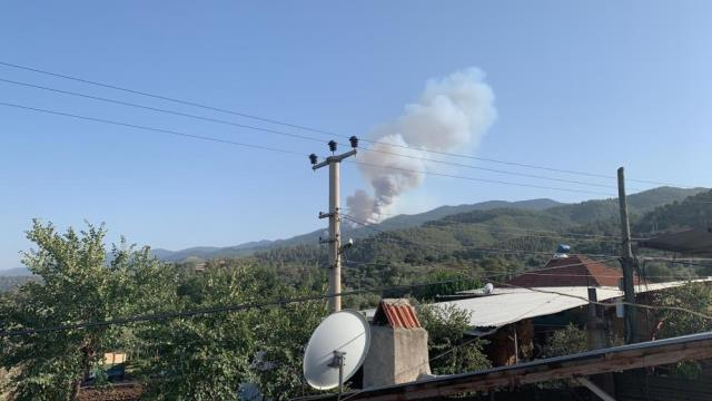 Türkiye'deki orman yangınları yedinci günde sürüyor! İşte il il son durum