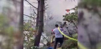 Riva: 'Köylüler kovalamış ama yakalayamamışlar' Beykoz'da ormanlık alanda çıkan yangın söndürüldü