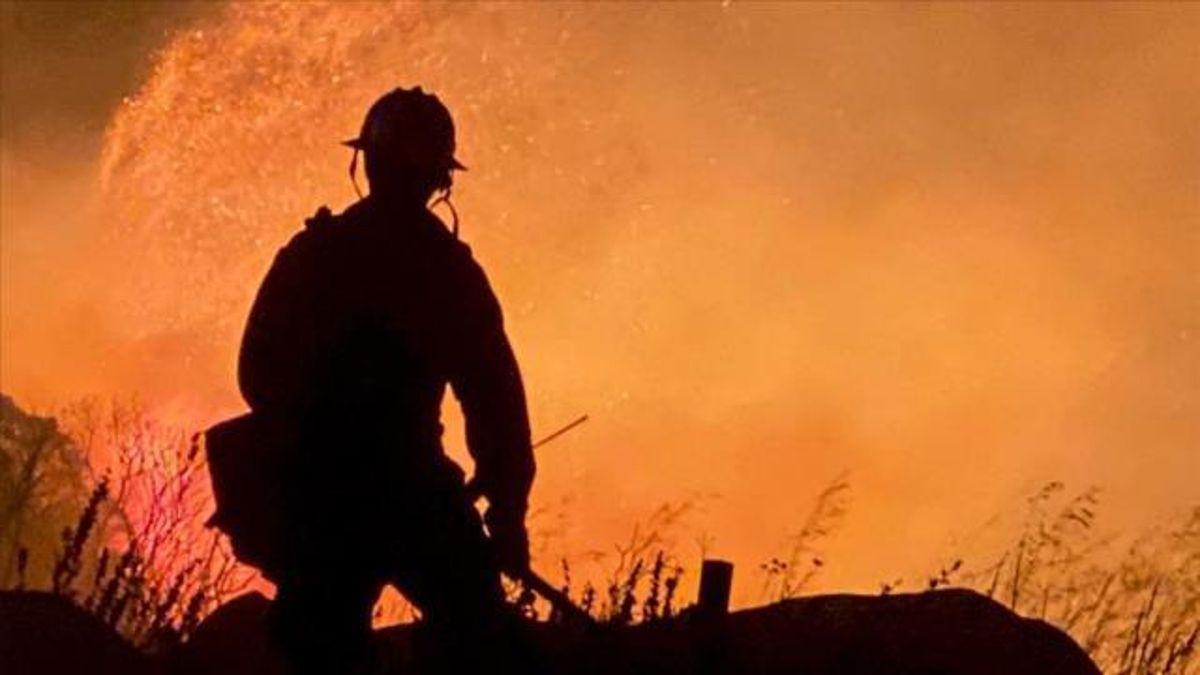 Kuyucak yangın! Kuyucak'ta yangın var mı? Kuyucak'ta yangın devam ediyor mu? Aydın Karacasu yangın son durum!