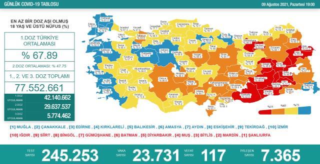 Son Dakika: Türkiye'de 9 Ağustos günü koronavirüs nedeniyle 117 kişi vefat etti, 23 bin 731 yeni vaka tespit edildi