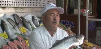 Kenan Balcı: Balıkçılar Müsilaj sonrası yeni sezondan umutlu