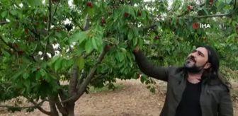 Dinar: Bu da sebil meyve bahçesi