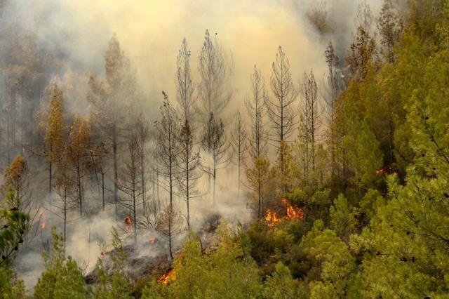 Antalya ve Muğla'da mücadele sürerken Burdur'dan da dumanlar yükseldi: Bu yangın tehlikeli