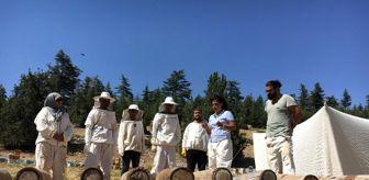 Akşam Sanat Okulu: Toroslar'da Yörüklerin göç yolunda ürettiği asırlık bal yeniden üretilecek