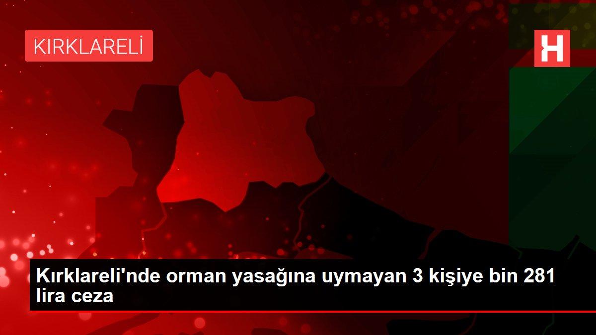 Kırklareli'nde orman yasağına uymayan 3 kişiye bin 281 lira ceza