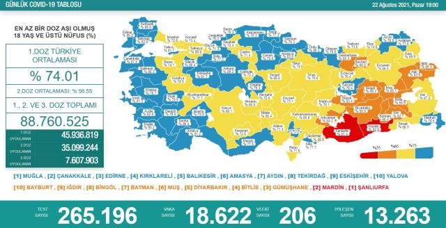 Son Dakika: Türkiye'de 22 Ağustos günü koronavirüs nedeniyle 206 kişi vefat etti, 18 bin 622 yeni vaka tespit edildi