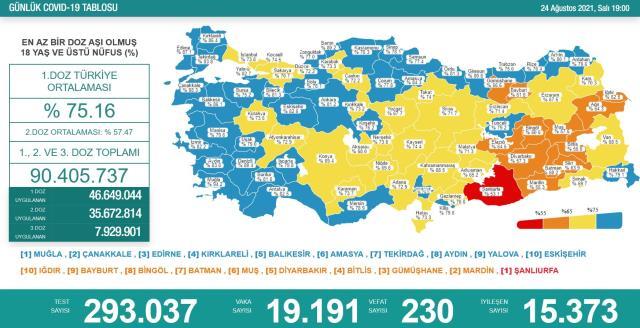 Son Dakika: Türkiye'de 24 Ağustos günü koronavirüs nedeniyle 230 kişi vefat etti, 19 bin 191 yeni vaka tespit edildi