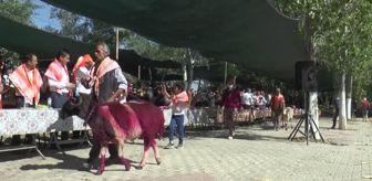 Karakoyunlu: 848 yıllık 'Sudan Koyun Geçirme' yarışması bu yıl da gerçekleştirildi