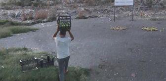 Mehmet Yüksel: Fırsatçılara tepki gösteren Diyarbakırlı iş adamı, 30 ton ürünü vatandaşlara ve martılara ücretsiz dağıttı