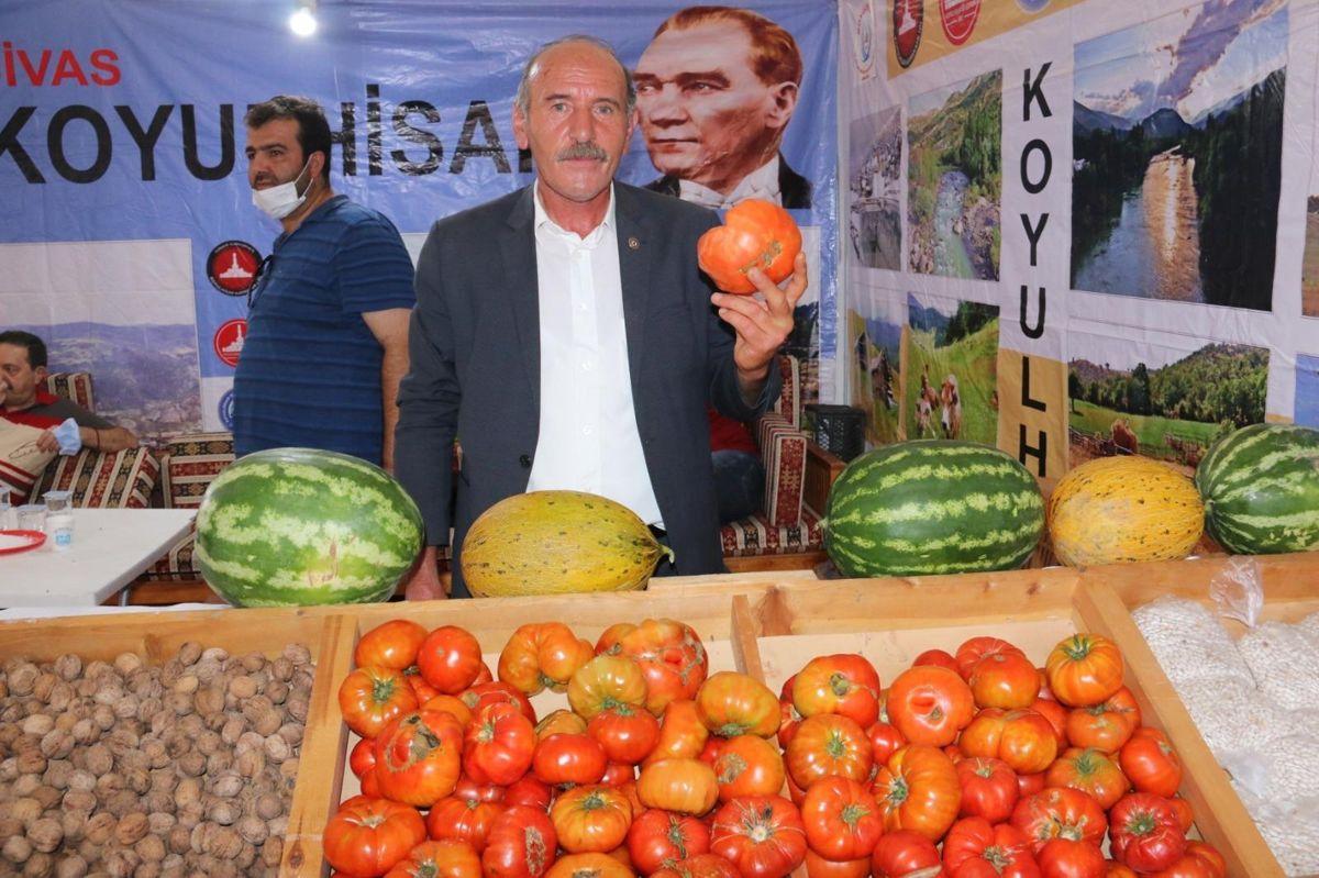 Sivas'ta ata tohumundan üretilen