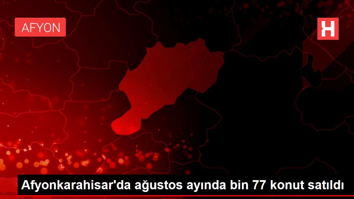 Afyonkarahisar'da ağustos ayında bin 77 konut satıldı