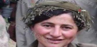 Gabar Dağı: Son dakika haberleri: Eren-13 operasyonunda etkisiz hale getirilen teröristin 'Turuncu' kategoride arandığı öğrenildi