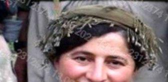 İçişleri Bakanlığı: Son dakika! Eren-13 Şehit Jandarma Uzman Çavuş Ufuk Bingöl Operasyonu kapsamında etkisiz hale getirilen bir teröristin 'Turuncu' kategorinden arandığı tespit...
