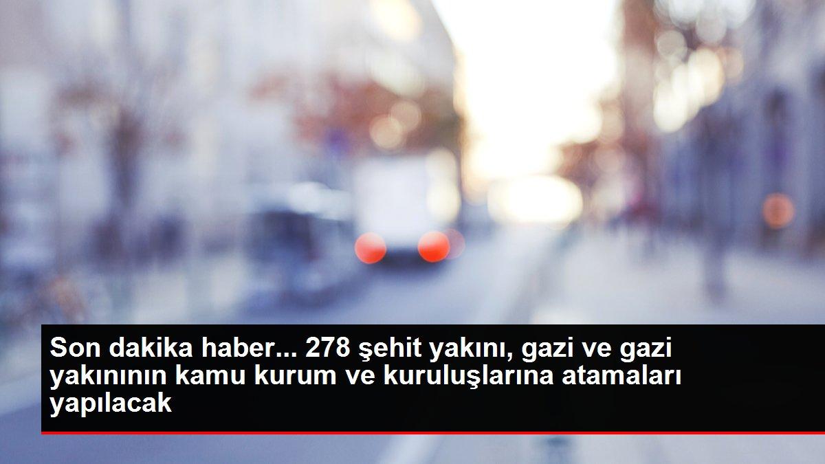 Son dakika haber: Şehit yakını, gazi ve gazi yakını 278 kişi kamu kurumlarına atanacak