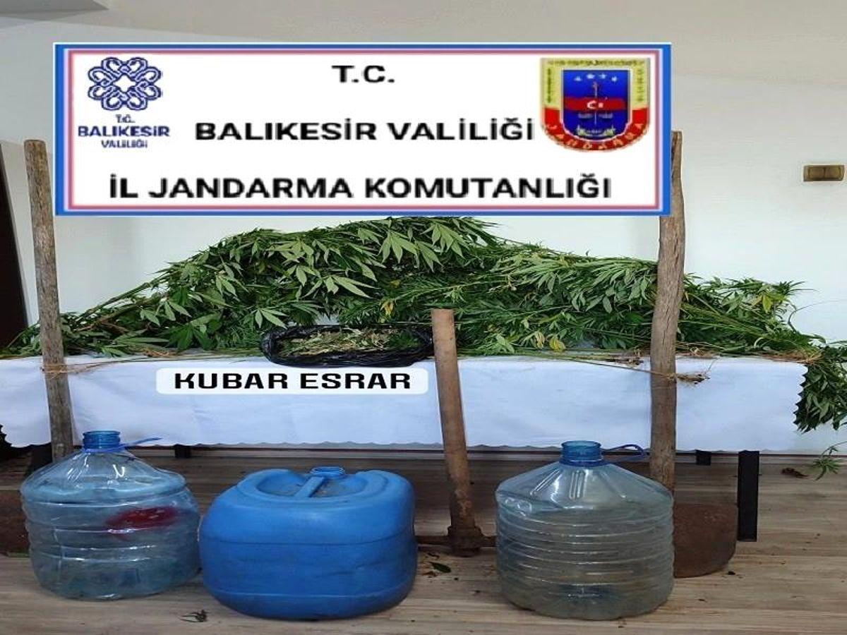 Son dakika haberleri | Manyas'ta uyuşturucu operasyonu