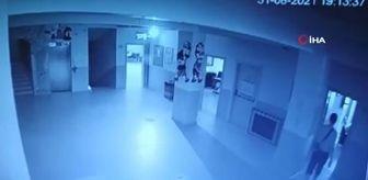 Hırsızlık Büro Amirliği: Son dakika! Okul fareleri kameraya yakalandı
