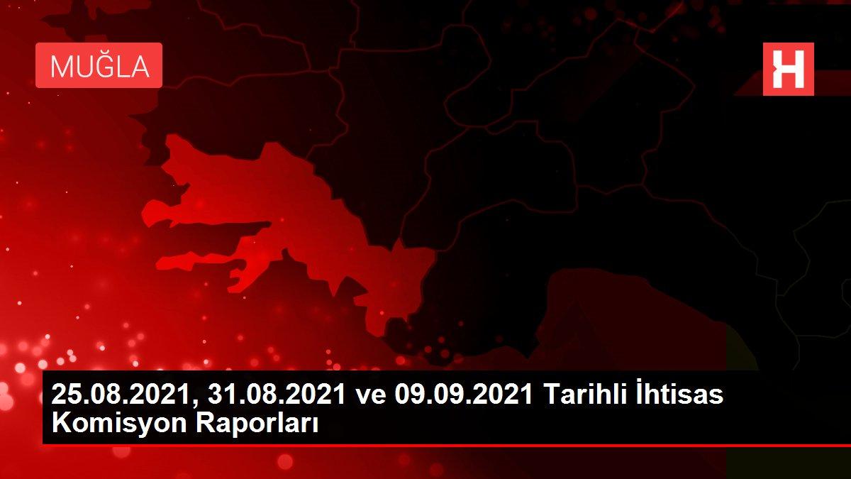 25.08.2021, 31.08.2021 ve 09.09.2021 Tarihli İhtisas Komisyon Raporları